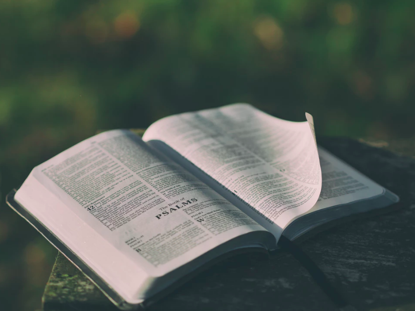 Recommended Resources on the Psalms